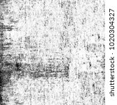 grunge texture black and white. ...   Shutterstock . vector #1020304327