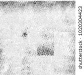 grunge black white. texture of... | Shutterstock . vector #1020304423