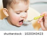mom feeds the child buckwheat... | Shutterstock . vector #1020343423