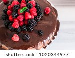 chocolate cake with berries ... | Shutterstock . vector #1020344977