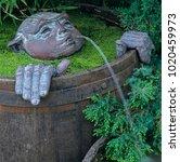 novelty water feature of face... | Shutterstock . vector #1020459973