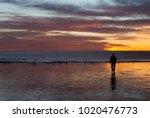 beach sunrise in puerto madryn  ... | Shutterstock . vector #1020476773