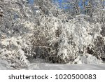 snow covered moscow. landscaped ... | Shutterstock . vector #1020500083