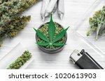 buds of marijuana  grinder with ...   Shutterstock . vector #1020613903