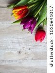 Tulips On Wooden Background....