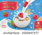 instant oatmeals oat flakes...   Shutterstock .eps vector #1020647377