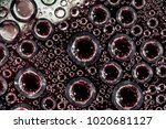 drops of water on a transparent ... | Shutterstock . vector #1020681127