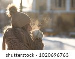 young woman in beige fur coat ... | Shutterstock . vector #1020696763