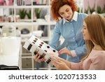 professional female hairdresser ... | Shutterstock . vector #1020713533