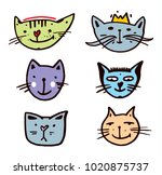 cat colors vector illustration... | Shutterstock .eps vector #1020875737