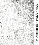 distressed overlay texture of... | Shutterstock .eps vector #1020877003