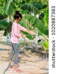 asian girl watering banana tree ...   Shutterstock . vector #1020887383