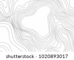 abstract black and white... | Shutterstock .eps vector #1020893017