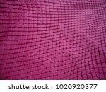 pink skin of a snake. texture... | Shutterstock . vector #1020920377