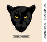 panther conservation  head... | Shutterstock .eps vector #1020935023