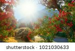 Stock photo beautiful background with red flowers illuminated by sun in a daytime in corfu island greece 1021030633