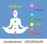 female body in lotus yoga asana ... | Shutterstock .eps vector #1021041643