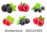 Ripe berries in closeup - stock photo