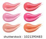 set of different lip glosses...   Shutterstock . vector #1021390483