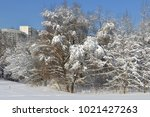 snow covered moscow. landscaped ... | Shutterstock . vector #1021427263
