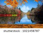 the beautiful maple season at... | Shutterstock . vector #1021458787
