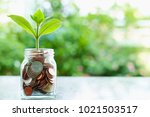 plant growing from coins in the ...   Shutterstock . vector #1021503517