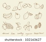 set of fruit doodle drawings... | Shutterstock .eps vector #102163627