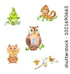 cute forest animals and birds....   Shutterstock . vector #1021690663