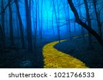 the yellow brick road leading... | Shutterstock . vector #1021766533