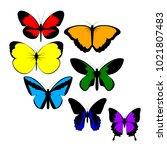 butterfly. vector illustration.   Shutterstock .eps vector #1021807483