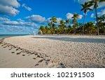 dominican republic | Shutterstock . vector #102191503