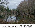 Logging Remnants Along The...