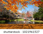 the beautiful maple season at... | Shutterstock . vector #1021961527