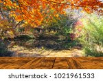 the beautiful maple season at... | Shutterstock . vector #1021961533