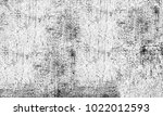 monochrome grunge background | Shutterstock . vector #1022012593