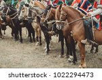 horses and horse men in a... | Shutterstock . vector #1022294473
