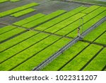 modern agriculture innovation... | Shutterstock . vector #1022311207