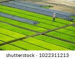 modern agriculture innovation... | Shutterstock . vector #1022311213