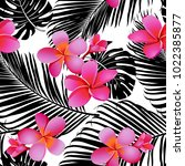 tropical coral flowers and... | Shutterstock .eps vector #1022385877