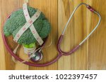 the concept of health care... | Shutterstock . vector #1022397457