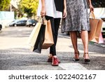 female ladies carrying colorful ... | Shutterstock . vector #1022402167