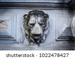 front view closeup of lion head ... | Shutterstock . vector #1022478427
