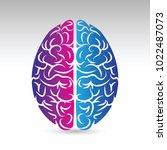 a vector icon of human brain... | Shutterstock .eps vector #1022487073