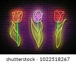floral set of bright signboards ... | Shutterstock .eps vector #1022518267