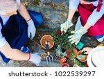gardening concept....   Shutterstock . vector #1022539297