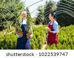senior couple of gardeners or...   Shutterstock . vector #1022539747