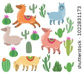 Cute alpaca lamas. Wildlife vector llama characters. Wildlife alpaca and green cactus illustration | Shutterstock vector #1022831173