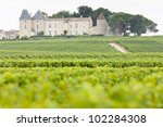vineyard and Chateau d'Yquem, Sauternes Region, France - stock photo