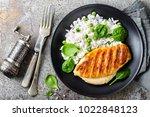 chicken breast or fillet ...   Shutterstock . vector #1022848123