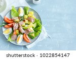 nicoise salad with tuna  eggs ... | Shutterstock . vector #1022854147